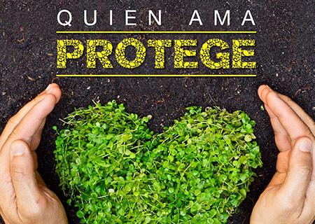 Quien ama protege